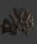 British Fossilised Crinoid, 'Pentacrinites'