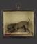 Preserved Miniature Dog