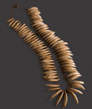 Hawaiian Dog Tooth Necklace, 'Lei Niho 'Ilio'